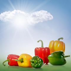 Mix Peperoni di vari colori