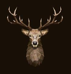 Deer polygonal Illustration. Low poly deer with horns.