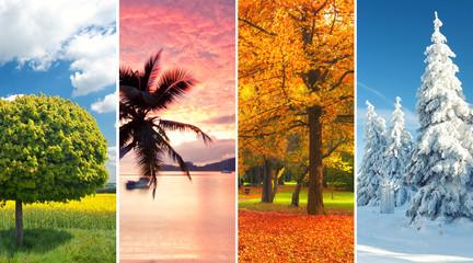 Zyklus der Natur - Jahreszeiten