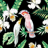 Fototapety parrots exotic floral seamless background