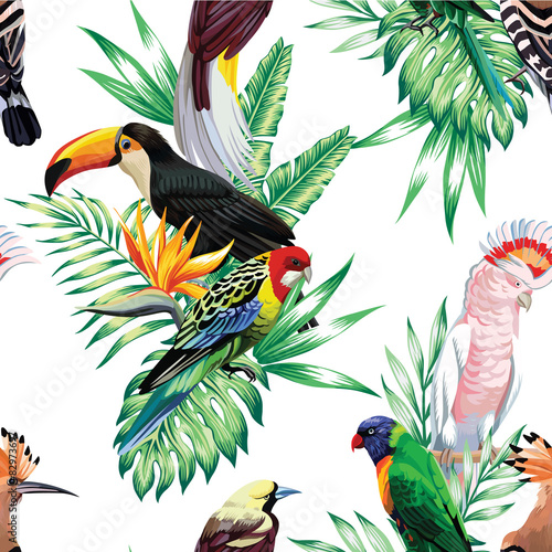 Fototapeta tropical birds and palm leaves pattern