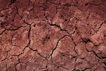 An abstract brown detailed soil texture.
