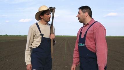 Two farmers talking on corn field