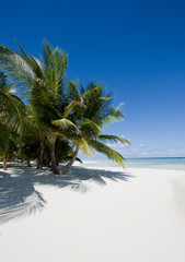 Noon on a tropical beach. Relax concept