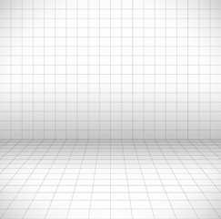 Blank space with perspective grid, wire frame.