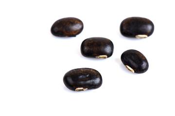 Mucuna pruriens DC., Seeds.