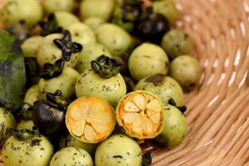 Diospyros mollis Griff., fruits.