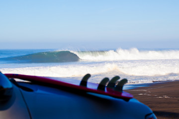 looking at a beautiful wave - ready to go in
