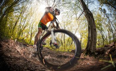 Sport. Mountain Bike cyclist riding single track