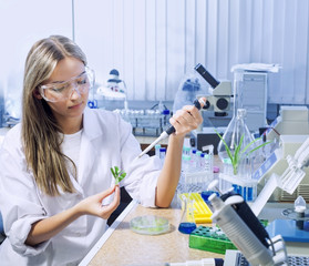scientist in chemical laboratory