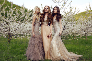 charming girls in luxurious dresses posing in blossom garden