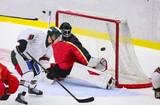Ice Hockey - Goal