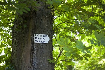 Lower Bank walk sign