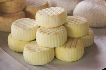 forme di formaggio prodotti caseari
