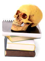 Bücher und Totenschädel
