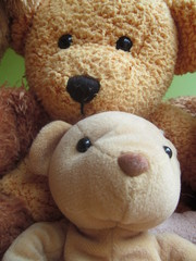 Teddy Bear selfie II