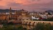 Cordoba, Spain footage at dusk.