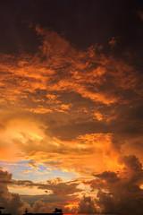 Magic Unreal Colorful Sunrise. Vertical
