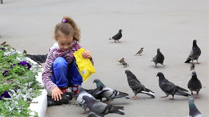 Little girl feeds pigeons in the park.