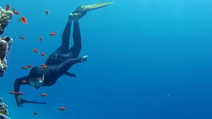 Freediver considering school of fish on the coral reef
