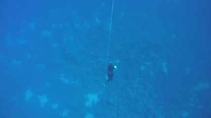 Freediver rises from the depths, Red Sea, Egypt