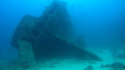 Feed sunken wrecked ship SS Carnatic, Red Sea