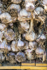 Garlic in market
