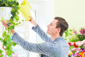 Florist arbeitet im Blumenladen gießt Blumen