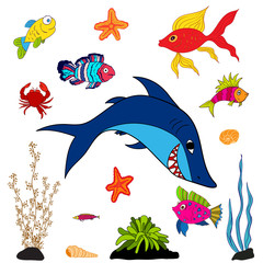 fishes and sea animals