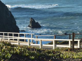 Ocean view from Marin Headlands