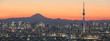 Tokyo cityscape and Mountain fuji in Japan
