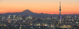 Tokyo cityscape and Mountain fuji in Japan - 83075491