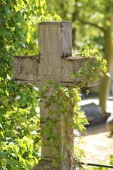 croix nature