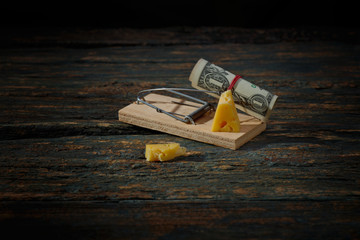 .mousetrap cheese and one dollar