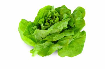 Gemüse 101