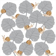 texture, chiocciole strisciano tra le foglie, sfondo bianco