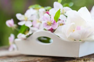 Tulpe und Apfelblüten auf Tablett