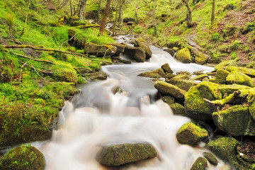 Stock image of a running river through moss covered rocks in Pad