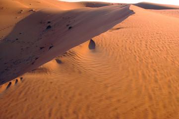 Liwa sand dunes