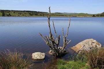 lac du pêcher, 15, Auvergne