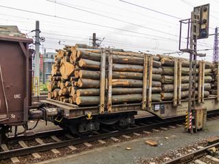 Wagon mit Holz beladen