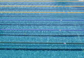 Blank swimming pool  with lane ropes in sunny day