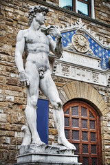 Michelangelo's David in hdr