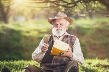 Farmer cutting and eating cheese outside in green nature