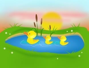 Three ducklings on pond