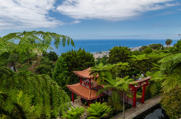 Landscape from Monte Palace Tropican Garden.