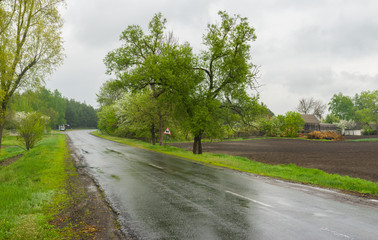 Wet spring in rural area, central Ukraine