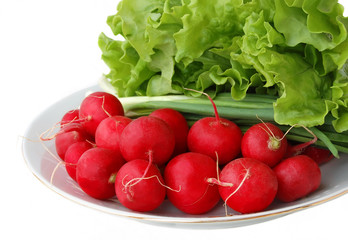 radish, onion and lettuce on a white plate