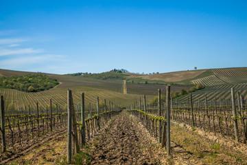 Toskana Chianti Landschaft