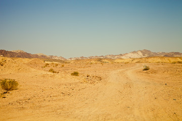 View of the nature reserve Ras Mohammed in Egypt. Selective focu